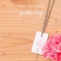 Akimbo free printable sparkler tags