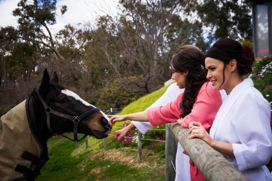 Almora and Leigh 21 550x366 Almora & Leigh's Rustic Winter Wedding