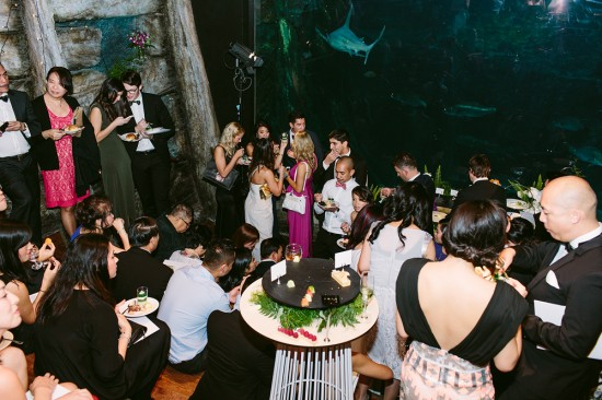 BrennanVanessa EngagementParty 145 550x366 An Enchanting Engagement At The Melbourne Aquarium