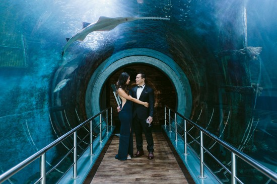 BrennanVanessa EngagementParty 26 550x366 An Enchanting Engagement At The Melbourne Aquarium