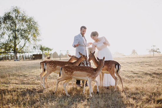 gum gully farm wedding061