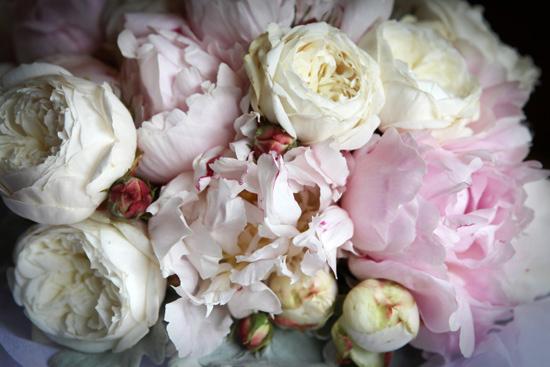 ripponlea garden wedding001