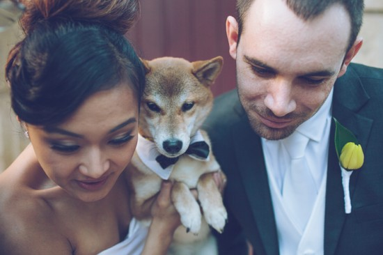 5 Bridal Party Portraits LR 071 550x366 Frances and Aarons White and Yellow Winter Wedding