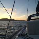 Sunset Cruising Papillon