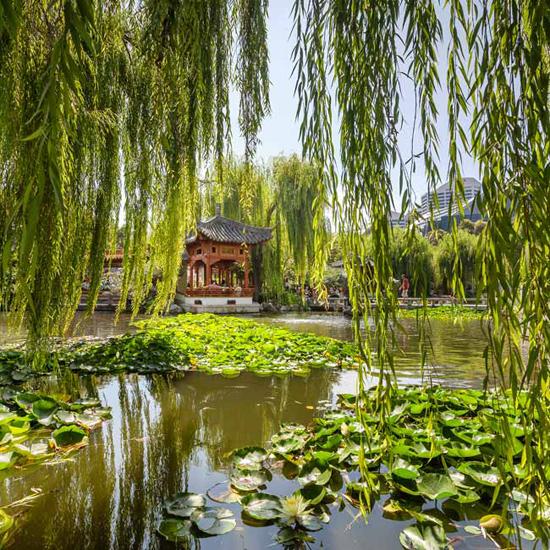 Chinese Gardens Of Friendship Wedding