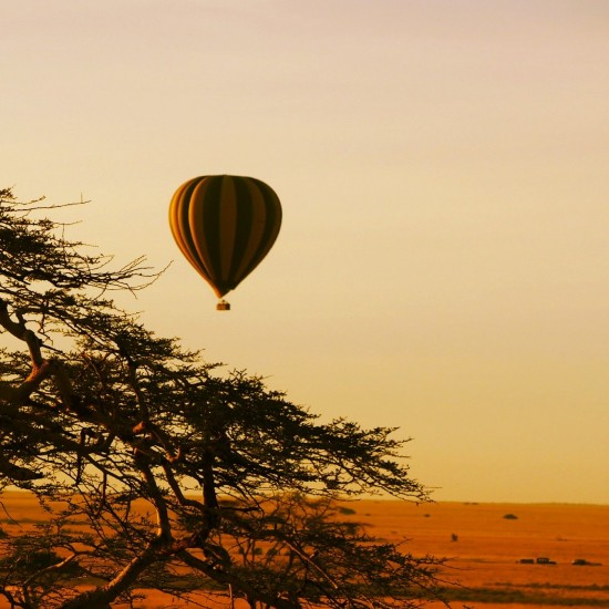 Hot Air Balloon 550x550 Groom's Africa Honeymoon Report: Adventure, Animals and Elton