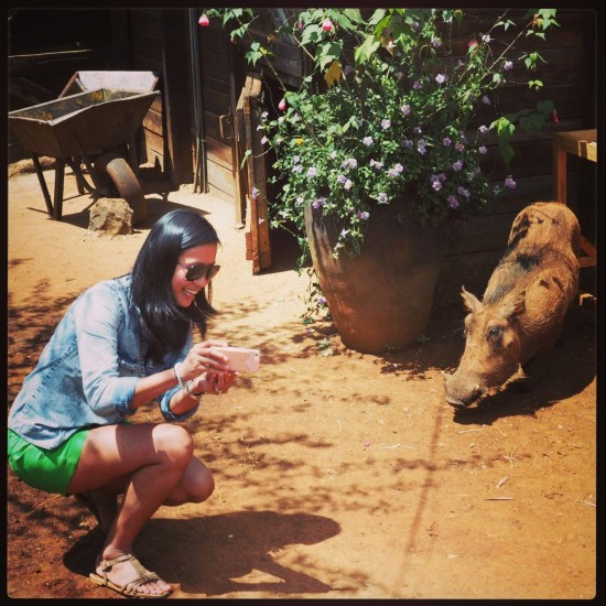pumba 550x550 Groom's Africa Honeymoon Report: Adventure, Animals and Elton