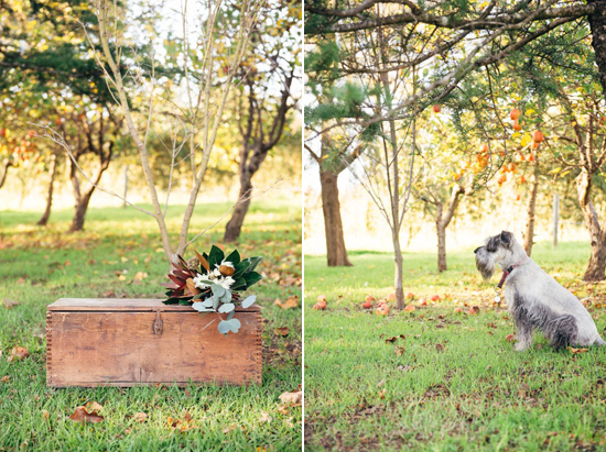 erustic winter orchard wedding10 Rustic Winter Orchard Wedding Inspiration