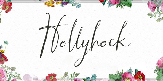 Hollyhock Tuesday Type Hollyhock