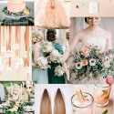 Peach and Apricot Party
