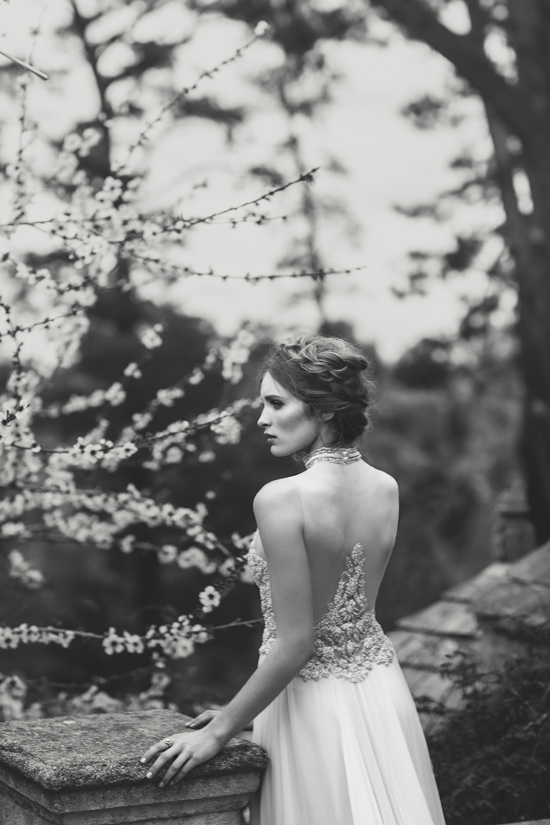 suzanne harward wedding gowns0009 Suzanne Harward 2015 Anniversary Collection