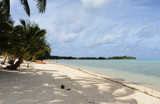 Nautlius resort cook islands9