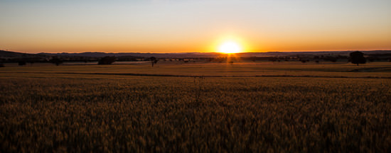australian farm engagement0060