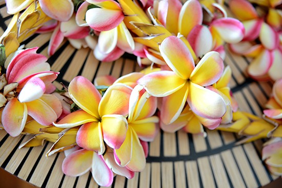 floral eis