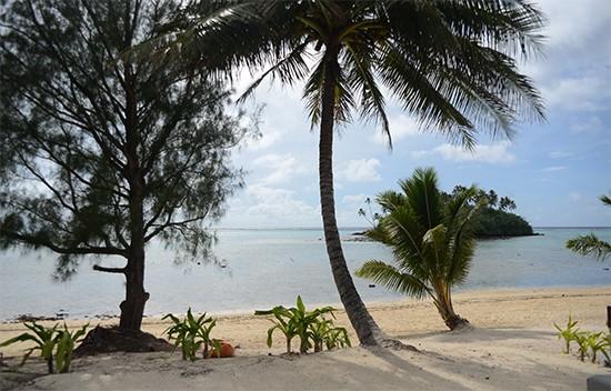 nautlius resort view room