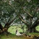 anne of green gables inspired wedding0028