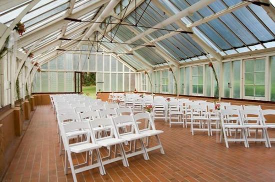 palm court sydney botanic gardens