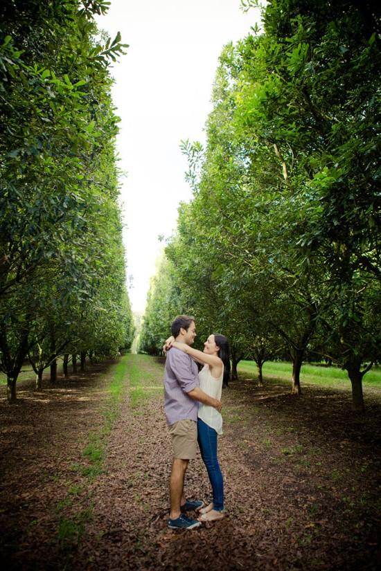 Macadamia Orchard Engagement0013