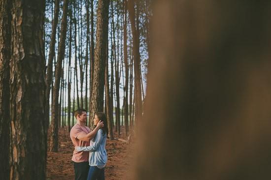 romantic pine forest engagement0016