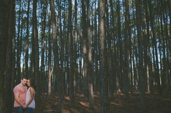 romantic pine forest engagement0030