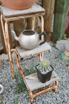 cactus and teapot