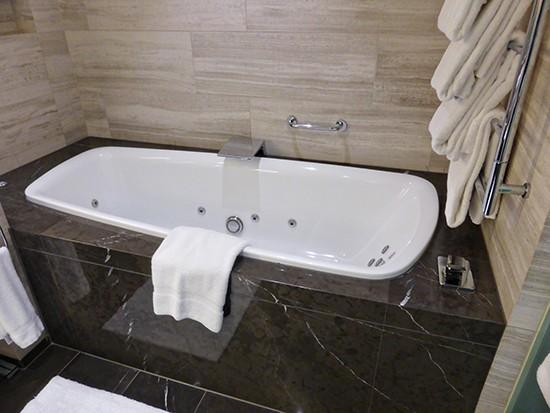 grand hyatt amabssador suite bath