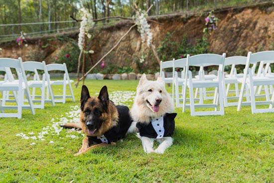 intimate garden wedding0007
