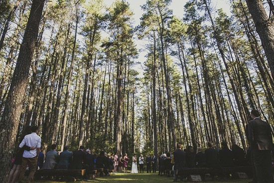 pine forest wedding0055