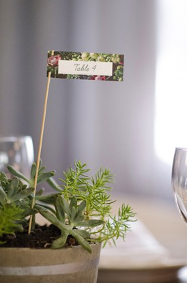 plant table numbers
