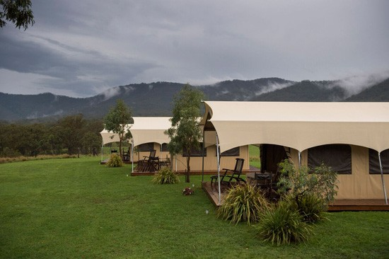 spicers canopy accomodation