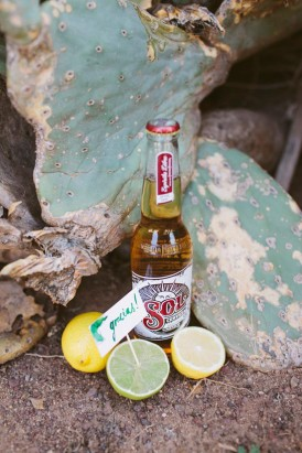 ssol beer with cactus