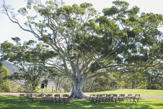 wedding ceremony setup at yandina station