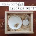 win palomas nest