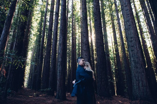 Winter forest engagement0004