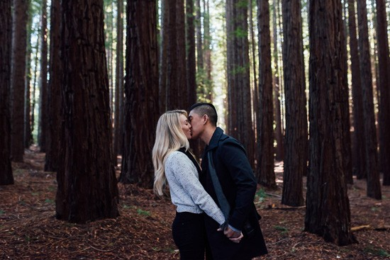 Winter forest engagement0013