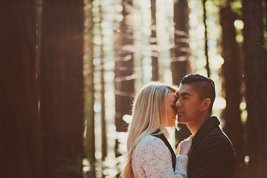 Winter forest engagement0020