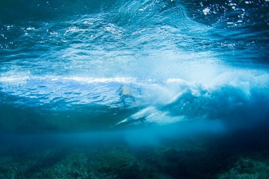 underwater wedding photos0024