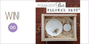 Palomas Nest Weddings Banner