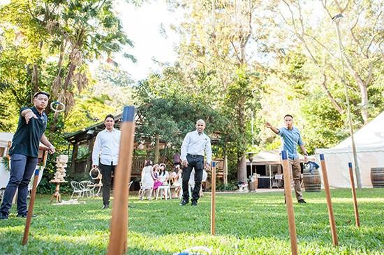 Garden party quoits