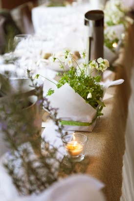 Potted plant wedding decor