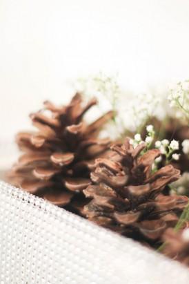 Winter wedding ideas0101