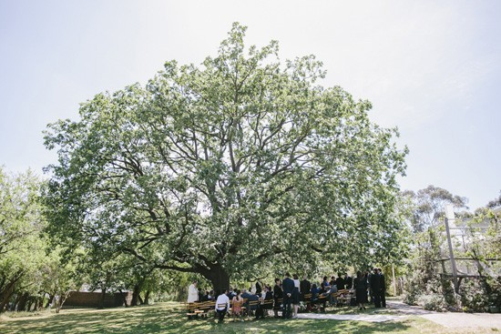 Wedding ceremony outdoor in Melbourne