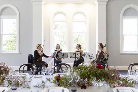 Stringspace String Quartet