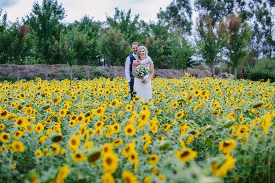 Newlyweds with sunflowers