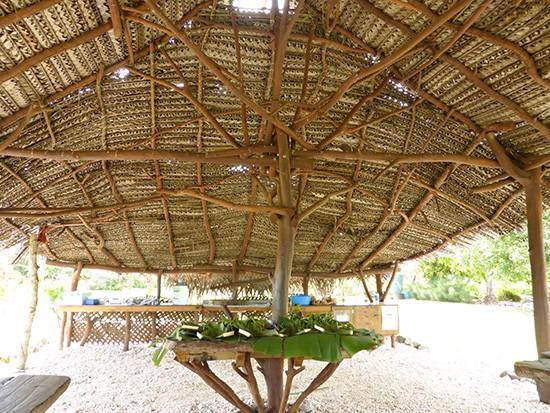 Cook Islands Punarei Cultural Experience