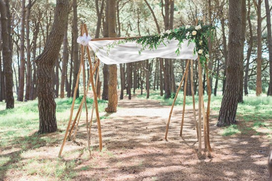 Forest Elopement040