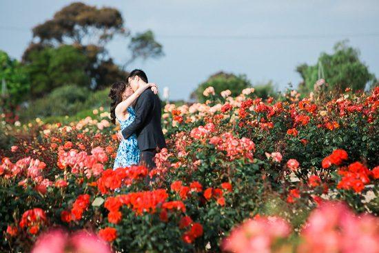Romantic Rose Garden Engagement20160512_0139