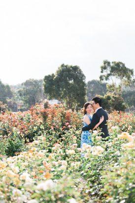 Romantic Rose Garden Engagement20160512_0148
