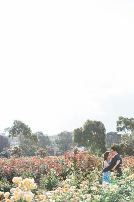 Romantic Rose Garden Engagement20160512_0150
