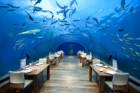 Conrad Maldives_Ithaa Undersea Restaurant_high